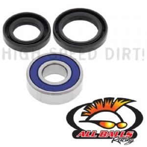 TRX250R 86-87 Lower Stem Bearing & Seals